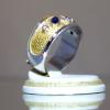 Δαχτυλίδι με Ζαφίρια & Ρουμπίνια